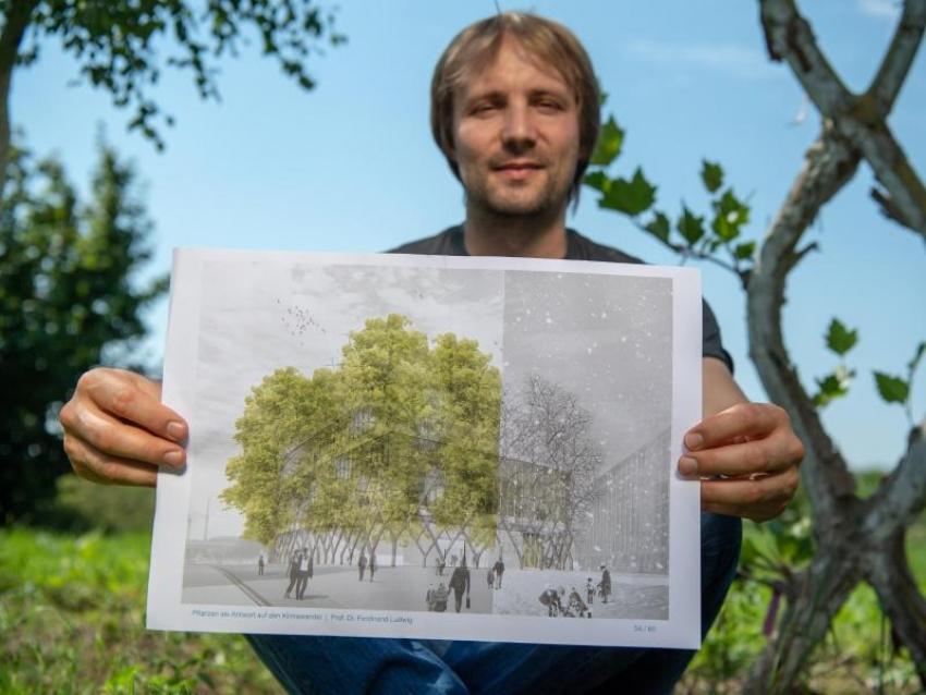 Wie Bäume zu Bauelementen von Häusern werden